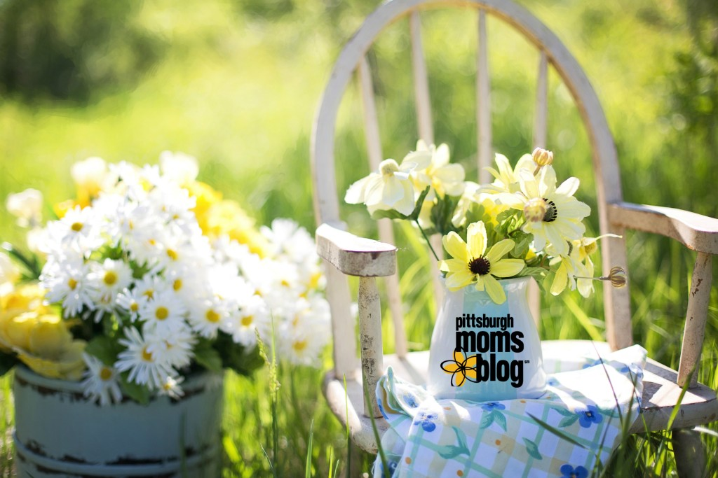 Give Spring an Awesome Start: 3 Ways to Start Spring in a Positive Way