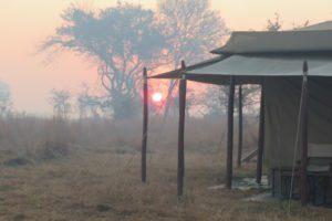 Sunrise beyond the edge of our tent in the Masaai Mara region.