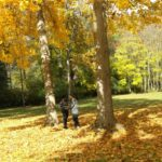 3 Great Things of Pittsburgh in the Fall: Come check it out!