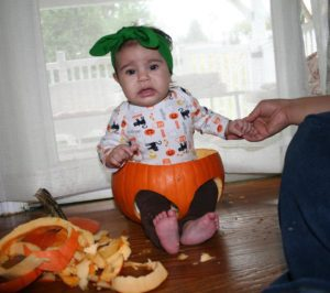 pumpkin-m