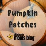 A Guide to Pittsburgh's Best Pumpkin Patches