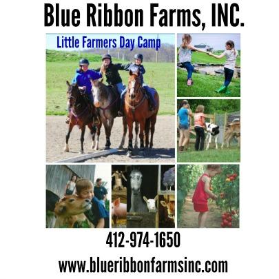 BlueRibbonCampAd405x405