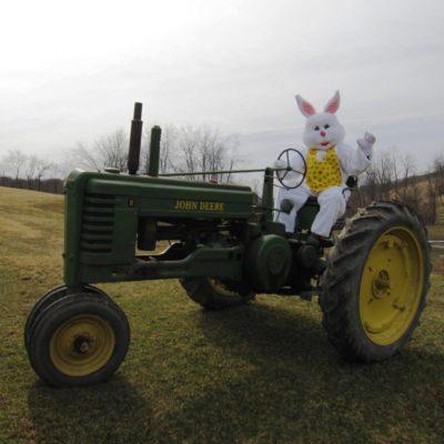 Photo Credit: Facebook.com Lonesome Valley Farm