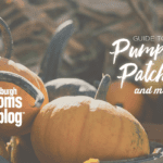 A Mom's Guide to Fall Festivals, Pumpkin Patches & More | Pittsburgh & Surrounding Areas