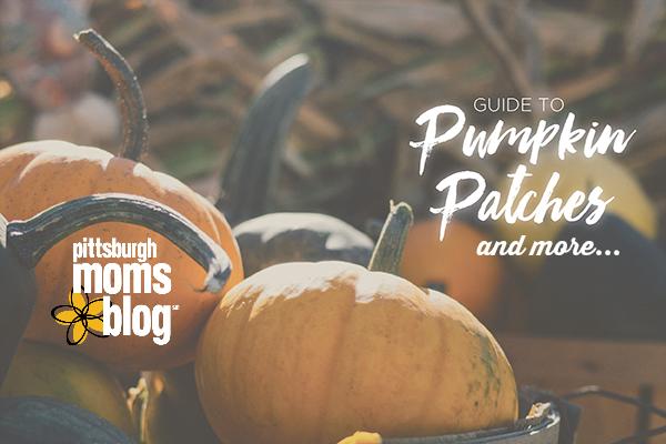 PumpkinPatchGuide_Blank_600x400-3