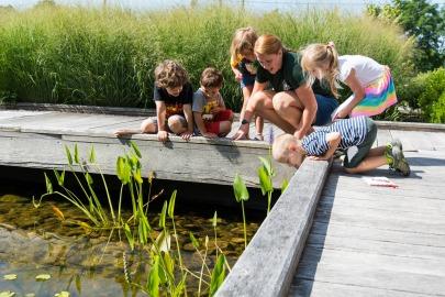 Phipps Summer Camps_CREDIT_Paul g. Wiegman405x270