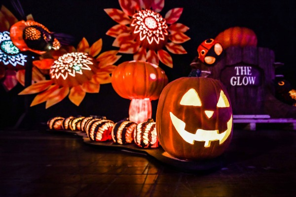 Halloween Movie Pumpkin 2018.The Glow A Jack O Lantern Experience