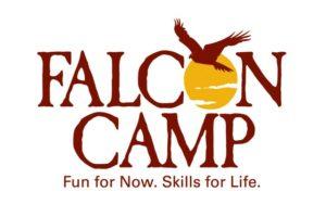 Falcon logo 13