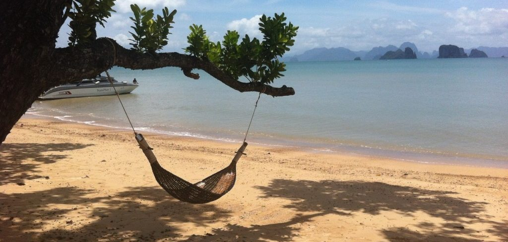 A hammock hanging from a tree on a beach overlooking the water.